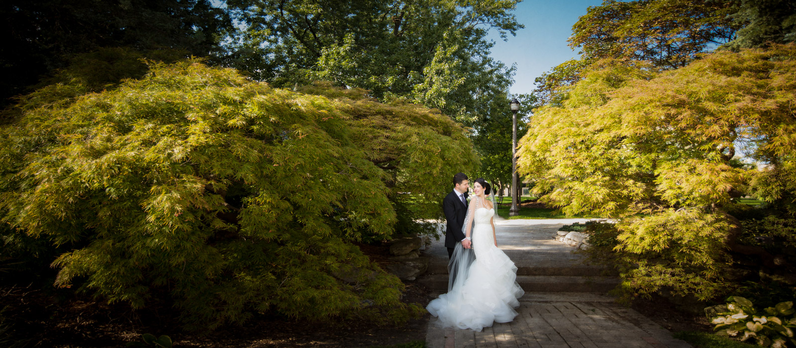 jackson park windsor wedding photographer